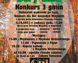Zdjęcia główne wydarzenia: Dary Lasu. Konkurs i Turniej 3 Gmin w Cieplicach